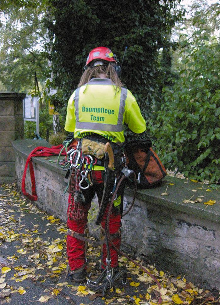 Baumpflege  Baumpflege aus Dortmund | Ungewitter Gartengestaltung